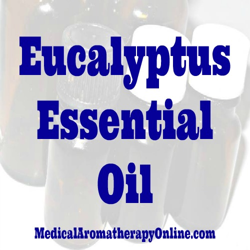 Ask An Aromatherapist: Eucalyptus Essential Oil Safety