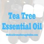 tea tree aromatherapy oil