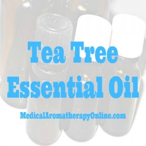 tea tree aromatherapy oil