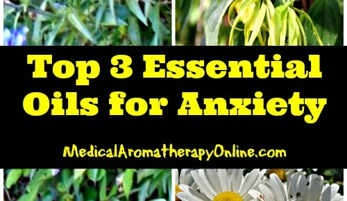 Free Aromatherapy Ebook: Top 3 Essential Oils for Anxiety Treatment