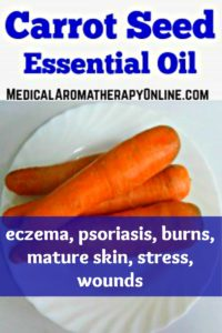 Carrot seed essential oil is used to treat eczema, psoriasis, burns, mature skin, stress and wounds.