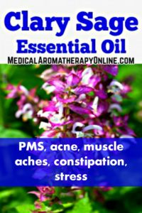Clary sage essential oil is used in aromatherapy to treat PMS, acne, muscle aches, constipation and stress.