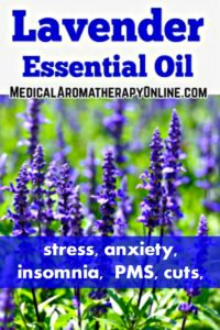 Lavender essential oil is used in aromatherapy to treat stress, anxiety, insomnia, PMS and cuts.